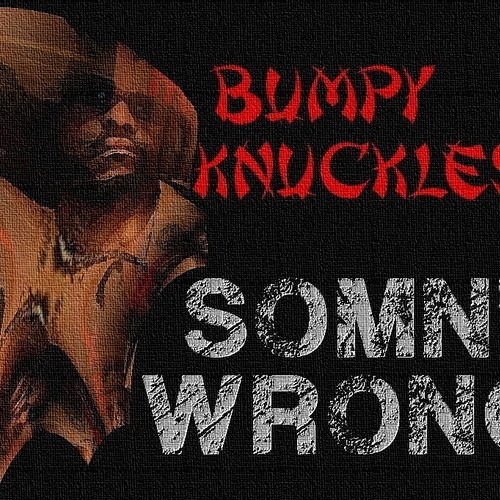 Bumpy Knuckles - Somn Wrong (rhythm22 picture archives)