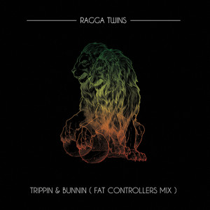 Trippin and Bunnin (rhythm22 picture archives)